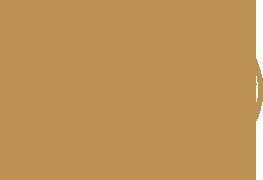 padron logo gold.png