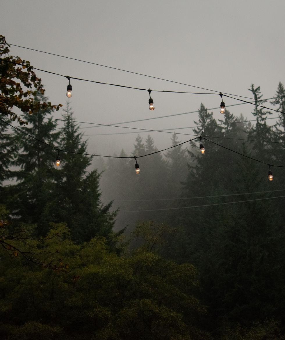 Grouse Mountain-11.jpg