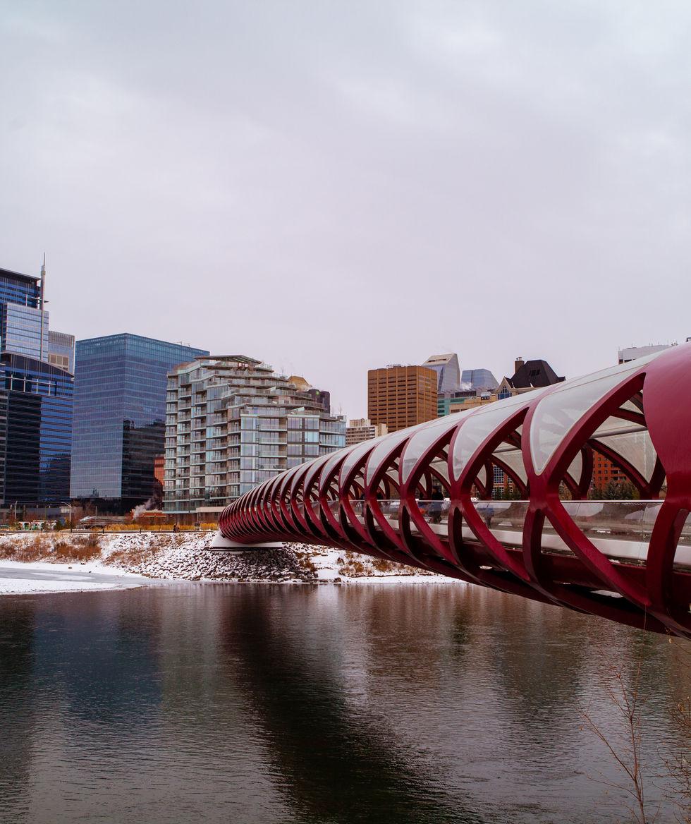 Calgary_Nov_12_2019-1.jpg