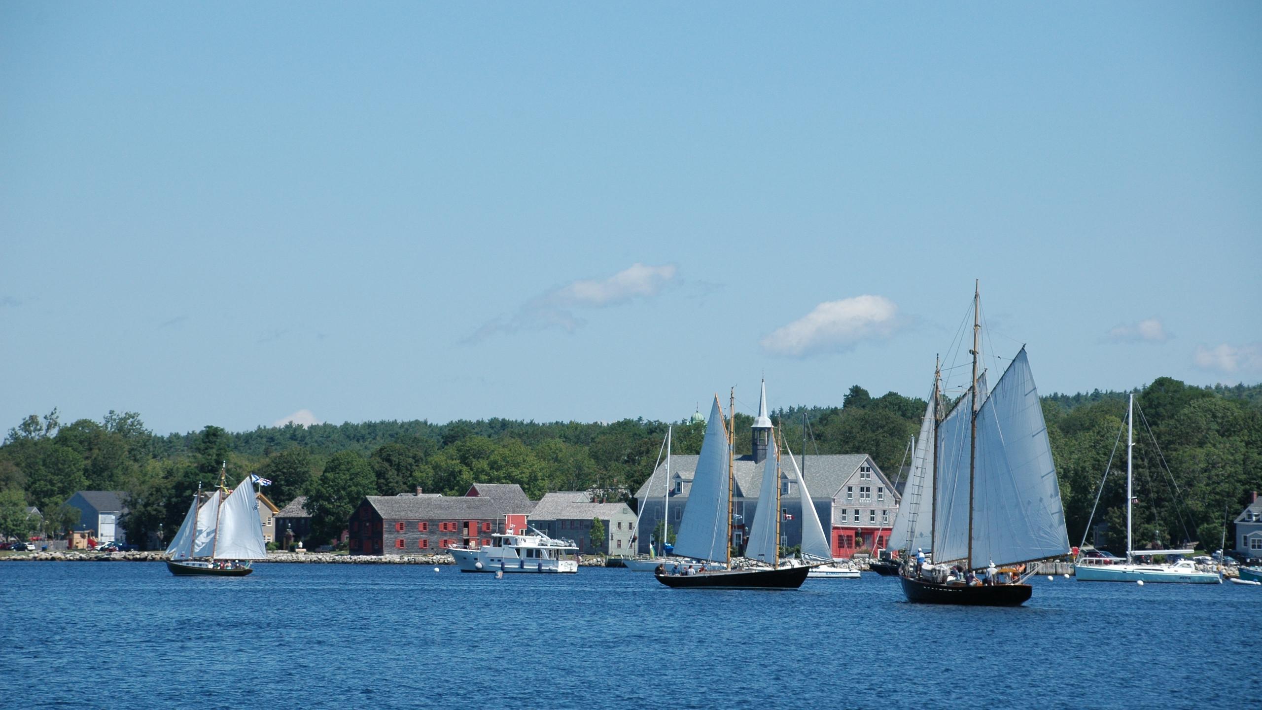 Schooners off the harbour