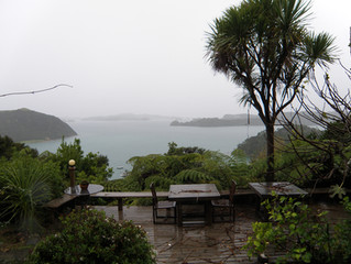 From Very Wet and Windy Bay of Islands!