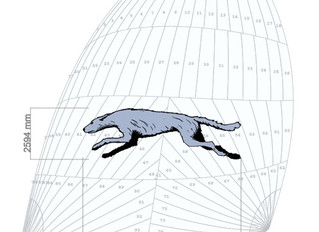 Artist Impression of our asymmetric sail with Wolfhound logo