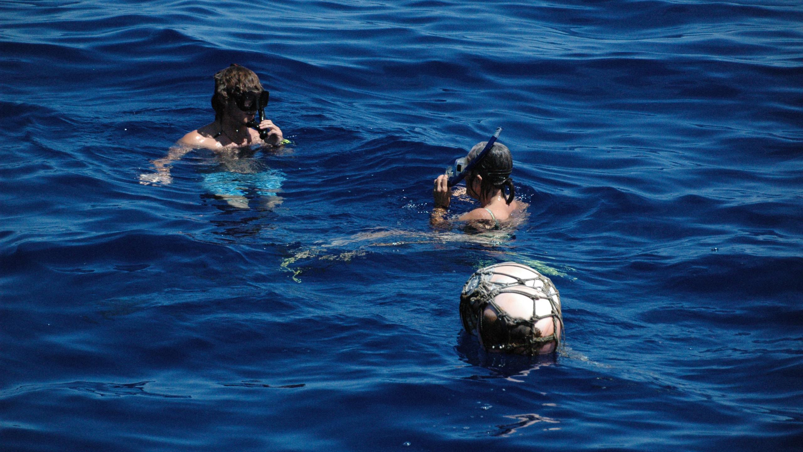 Mid Atlantic swim