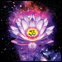 lotus flower SQUARE