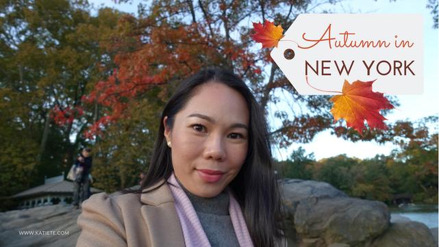 Video | Autumn in New York