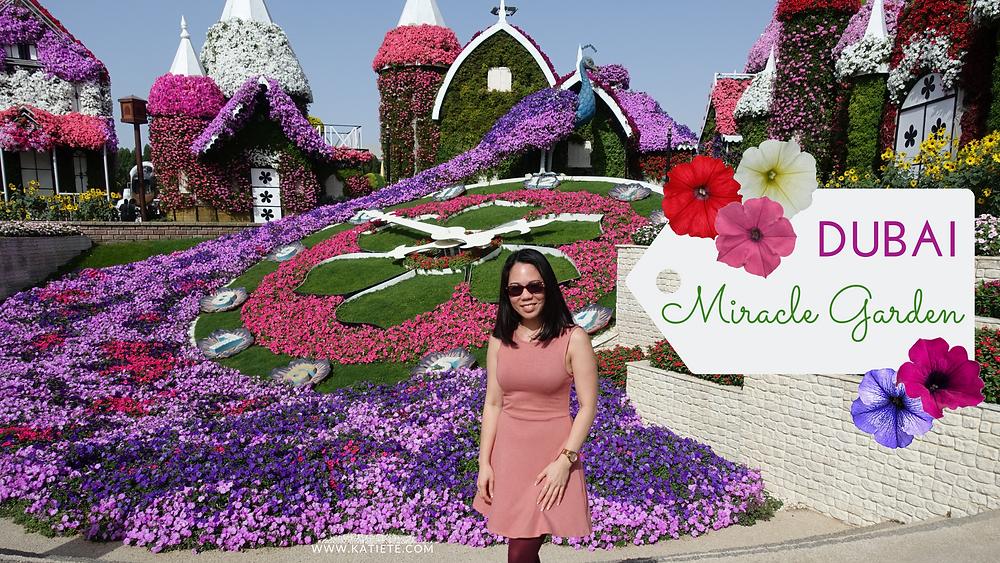 Dubai Miracle Garden season 7