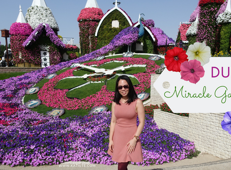 Video | Dubai Miracle Garden season 7