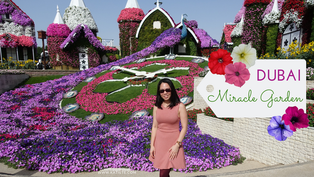 Video | Dubai Miracle Garden season 7