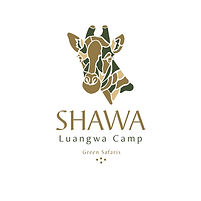 Shawa Logo.jpg