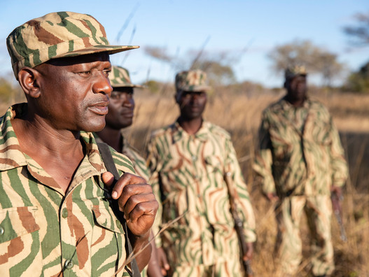 How Special Anti-Poaching Units differ to traditional Anti-Poaching Units
