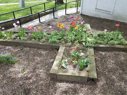 STC garden