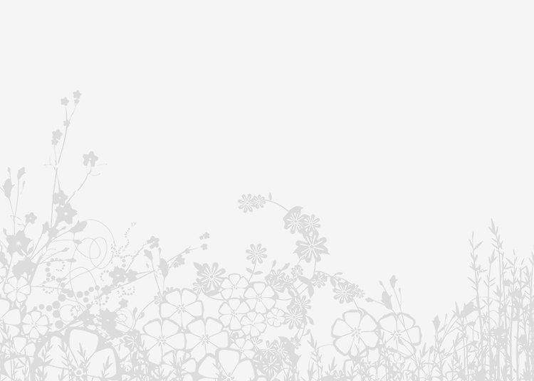 banner5.jpg