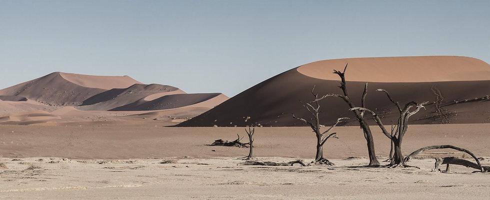 namibia-desert-1400x571.jpg