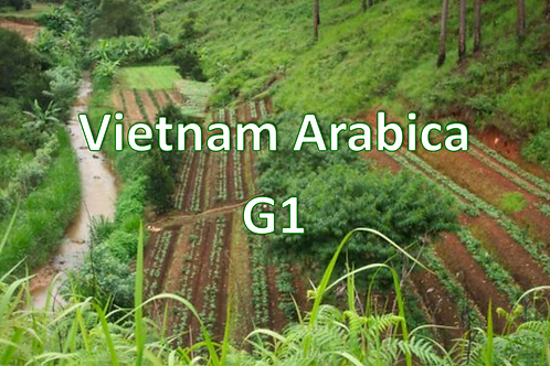 Raw Green Vietnam Arabica G1
