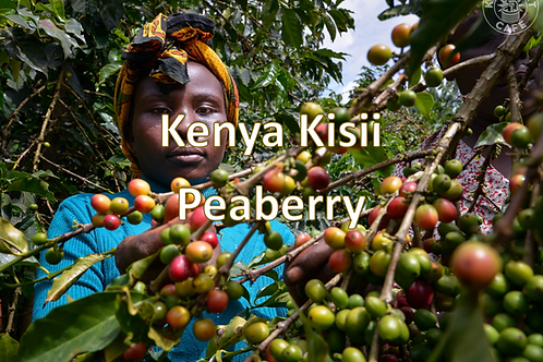 Raw Green Kenya Kisii Peaberry