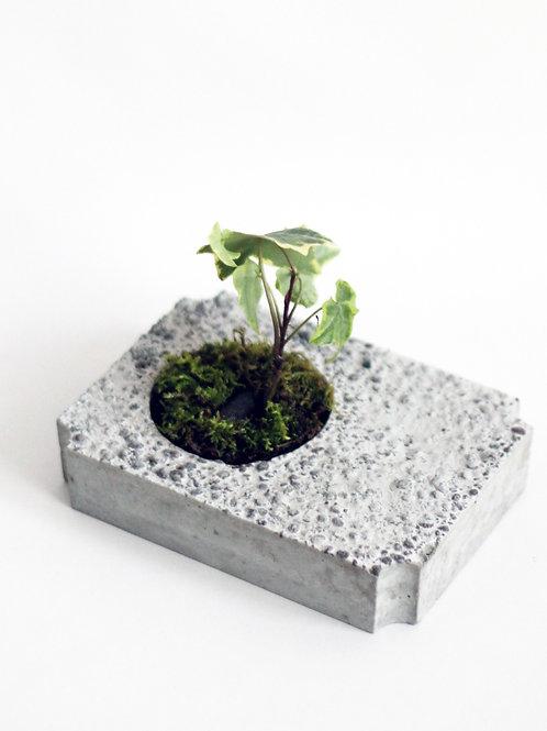 [002] Block Planter