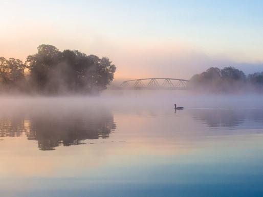 Today's Feels: Morning Mist