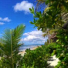 Bohol's view