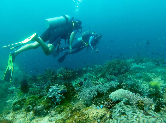 Dive Master guide Anda Scuba Diving