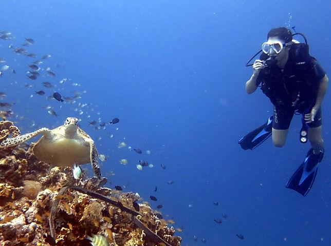Open Water dive AndaScuba Diving