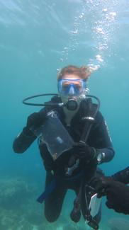 Récolte de fragments de corail