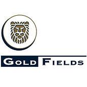 Gold Fields.jpg
