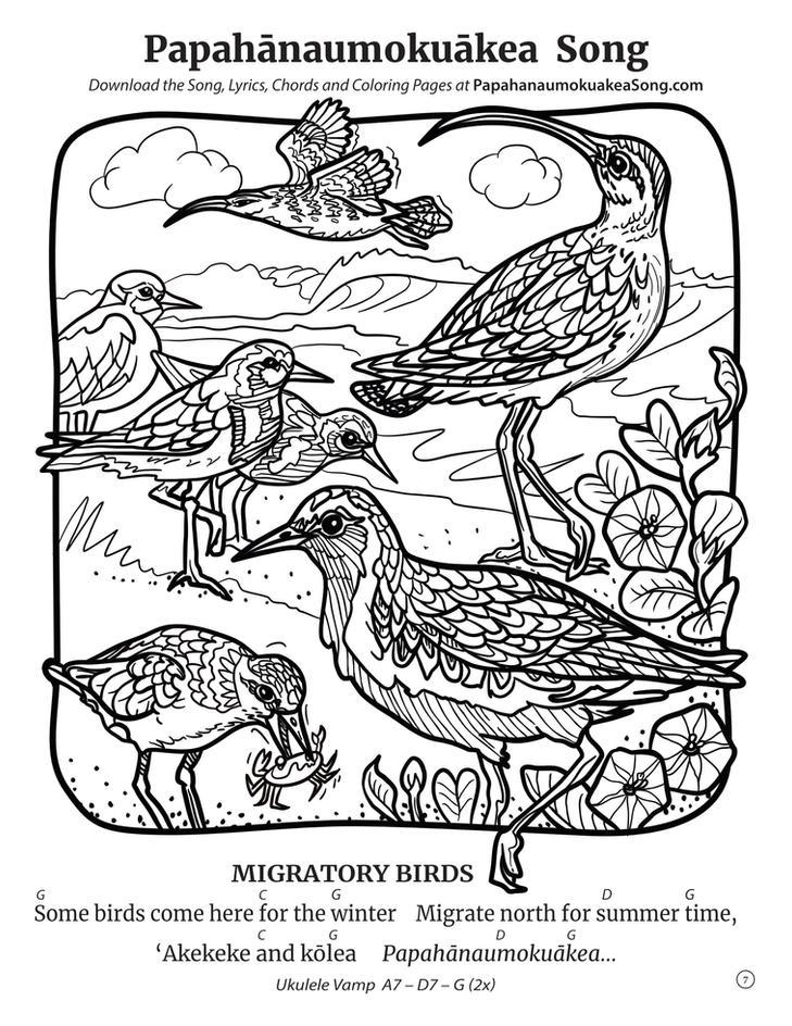 Papahānaumokuākea Song Coloring Book (page 7)