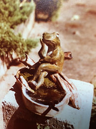 frog with lisa's legs.jpg