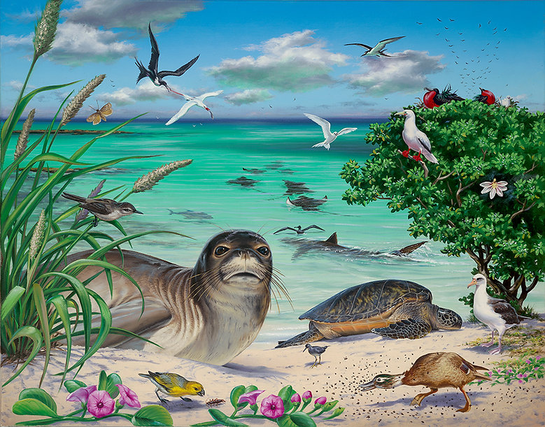 HawaiianAtoll_Med.jpg