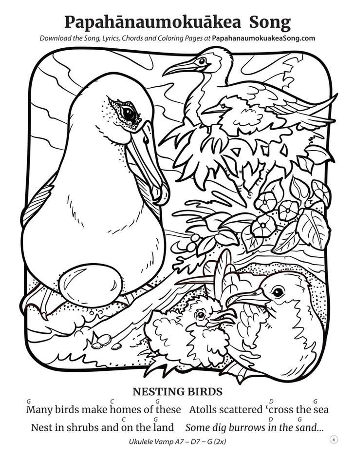 Papahānaumokuākea Song Coloring Book (page 6)