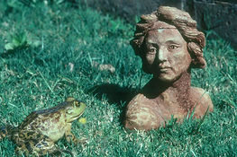 frog sculpt.jpg