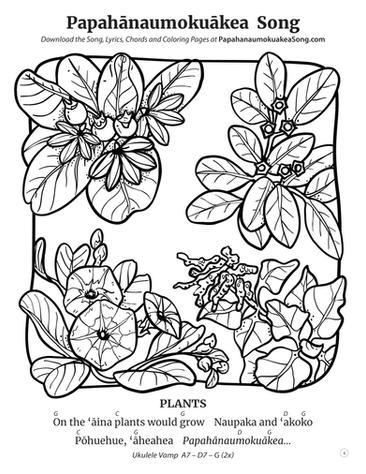 Papahānaumokuākea Song Coloring Book (page 4)
