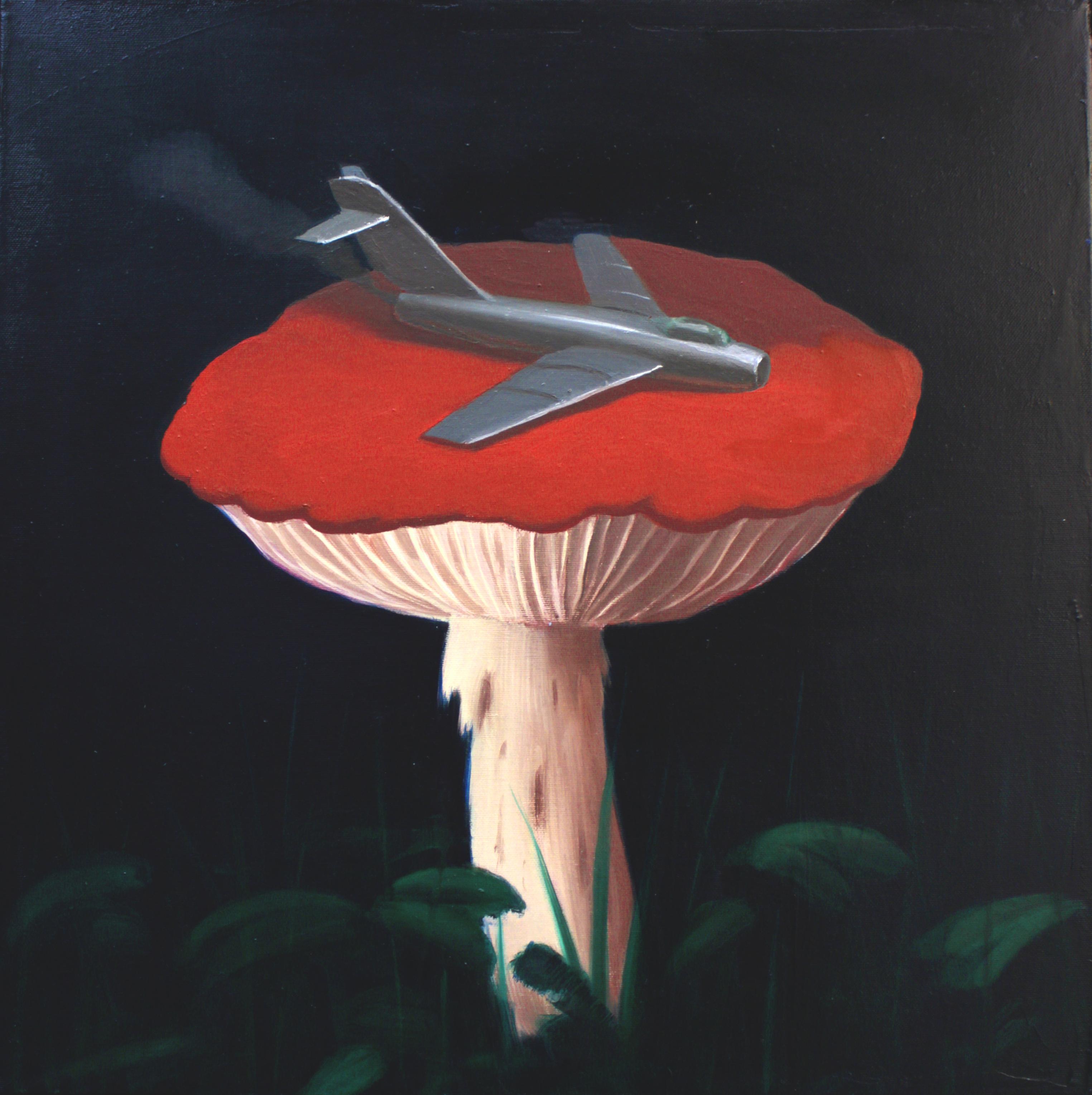 Mushroom landing