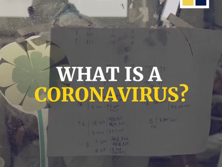 Everything you need to know about the coronavirus is right here.