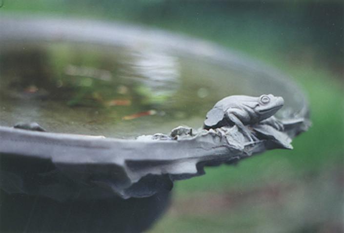 Stone Birdbath Frog