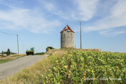 Saint-Léonard-le moulin
