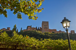 © Gilles Nicoud-Alhambra-IMG_8533