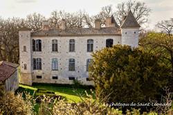 Le chateau de Saint-Léonardjpg