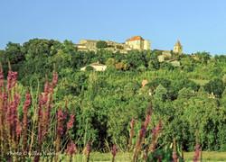 Gramont-château vue du val d'Arratz-2013