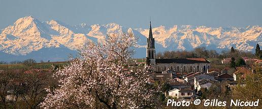 Pic Pyrénées-StClar-8,5x5.jpg