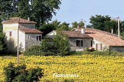 Flamarens-Saint-Créac © Gilles Nicoud