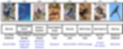 Liste_oiseaux_ouest_américain.jpg