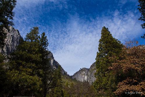 Yosemite's Colours - Photo Notecard