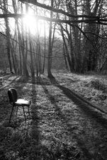 Black and white urban and landscape photography. Against low sunlight an office chair, abandoned in woodland, throws long shadows