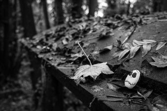 Black and white urban and landscape photography. A stone, painted with a Halloween face, lies on a leaf-covered grave in Arnos Grove cemetery, Bristol, UK