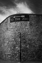 Black and white urban and landscape photography. A vintage sign, high on a stone wall, points visitors to the zoo in Bristol, UK