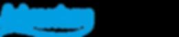 logo v2p.png