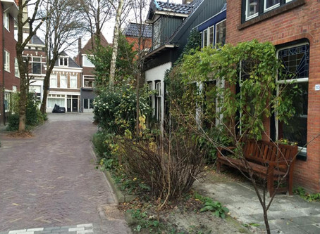 Woonerf: Inclusive and Livable Dutch Street