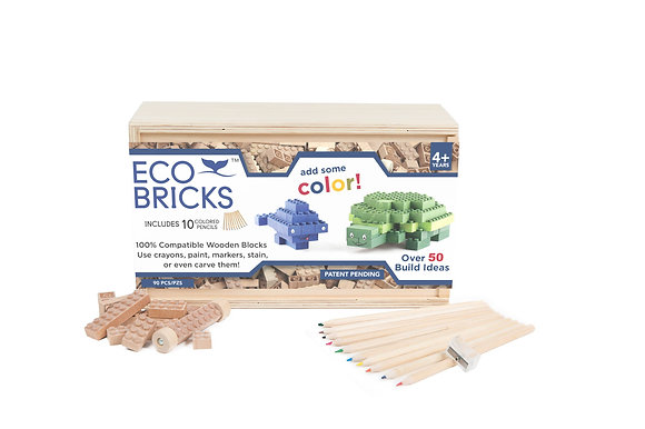 Eco Bricks 90 piece