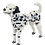 Thumbnail: Dalmatian